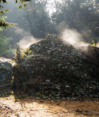 Compost_Heap